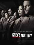 Greys Anatomy tv series e1345619934373 TV Series